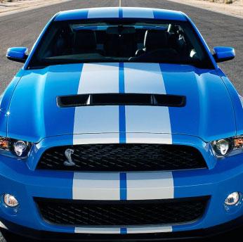 Mustang Gt500 Gt 500 Side Body Rocker Panel Decal Decals