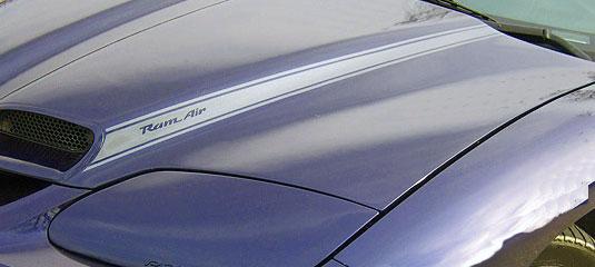 Firebird Style Ram Air Decals For Your Pontiac Grand Prix