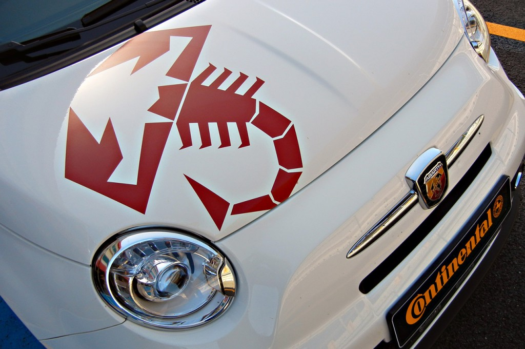 Scorpion Scorpions Decal Decals Graphics Fit Any Fiat 500